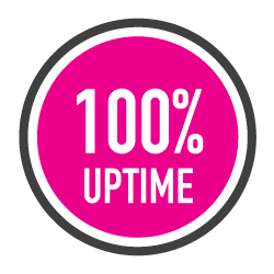 100% Uptime Guarantee